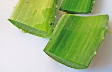 Aloe vera pomaže zdravlju